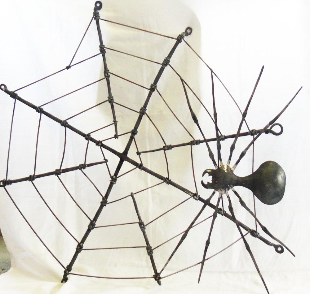 Spinne mit Netz